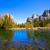 ドーム · ヨセミテ国立公園 · カリフォルニア · 米国 · 森林 - ストックフォト © lunamarina