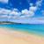zoon · zee · middellandse · zee · landschap · venster · bomen - stockfoto © lunamarina