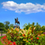 Вашингтон · статуя · Бостон · общественного · саду · центральный - Сток-фото © lunamarina