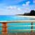 riet · tropische · perfect · strand · water - stockfoto © lunamarina