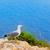 クローズアップ · 表示 · 美しい · 鳥 · 眼 · 自然 - ストックフォト © lunamarina
