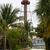 vuurtoren · eiland · Florida · USA · palm · groene - stockfoto © lunamarina