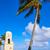 dłoni · plaży · zegar · wieża · Florida - zdjęcia stock © lunamarina