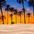 песчаная · дюна · Восход · пустыне · красивой · свет · фон - Сток-фото © lunamarina