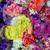 flor · fresco · flores · rosas · compras - foto stock © lunamarina