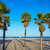 playa · Valencia · mediterráneo · España · árbol · naturaleza - foto stock © lunamarina