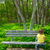 lonely children sad looking the forest sitting on bench stock photo © lunamarina