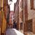 katolikus · templom · belváros · fa · város · nyár - stock fotó © lunamarina