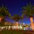 Orlando · sziluett · naplemente · tó · Florida · USA - stock fotó © lunamarina