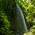 laurel · floresta · nebuloso · vulcânico · ilha · la - foto stock © lunamarina