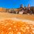 velho · mina · Espanha · ácido · secar · lago - foto stock © lunamarina