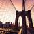 brooklyn bridge sunset with manhattan skyline us stock photo © lunamarina