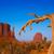 dolinie · zachód · rękawice · Utah · suszy · oddziału - zdjęcia stock © lunamarina