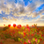 puesta · de · sol · otono · cosecha · maduro · uvas · cielo - foto stock © lunamarina