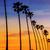 hurma · ağacı · caribbean · sahil · orman · doğa - stok fotoğraf © lunamarina