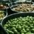 zwarte · olijven · klein · witte · schotel · blad · vruchten - stockfoto © lunamarina