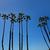 Kaliforniya · palmiye · ağaçları · mavi · gökyüzü · yüksek · grup · gökyüzü - stok fotoğraf © lunamarina