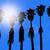 california palm trees washingtonia western surf flavour stock photo © lunamarina