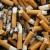tok · küllük · yalıtılmış · beyaz · duman · ilaçlar - stok fotoğraf © lunamarina