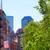 american flag in boston near common stock photo © lunamarina