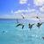 clave · oeste · Florida · playa · agua · naturaleza - foto stock © lunamarina