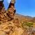 tenerife · park · bergen · hemel · natuur - stockfoto © lunamarina