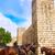 мифический · Существа · плиточные · стены · исторический · Козы - Сток-фото © lunamarina
