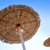 hut sunroof umbrella on dried grass with lens flare stock photo © lunamarina