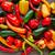 mexicano · quente · colorido · serrano - foto stock © lunamarina