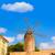 palma de majorca windmills wind mill in mallorca stock photo © lunamarina
