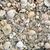 conchas · arena · ondulado · sol · fondo · sombra - foto stock © lunamarina