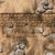kum · taşlar · ayak · izi · plaj · soyut · manzara - stok fotoğraf © lunamarina