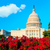 bandeira · edifício · Washington · DC · voador · colina · casa - foto stock © lunamarina