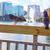 Orlando · sziluett · tó · Florida · galambfélék · USA - stock fotó © lunamarina
