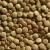 lentils macro crop texture in brown color stock photo © lunamarina