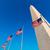 washington dc monument and american flags us stock photo © lunamarina