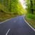 asfalto · curva · carretera · forestales · verde · primavera - foto stock © lunamarina