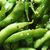 friss · zöld · tálak · szója · bab · só - stock fotó © lunamarina