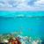 balık · okul · sualtı · akdeniz · deniz · arka · plan - stok fotoğraf © lunamarina