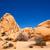 drzewo · parku · rock · California · pustyni - zdjęcia stock © lunamarina