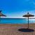 praia · filho · mallorca · Espanha · sol - foto stock © lunamarina
