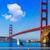 San · Francisco · Golden · Gate · Bridge · gabbiano · California · USA · blu - foto d'archivio © lunamarina