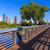 ヒューストン · スカイライン · 公園 · テキサス州 · 米国 · 空 - ストックフォト © lunamarina