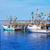 cape · cod · strand · Massachusetts · USA · natuur · zee - stockfoto © lunamarina