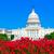 Washington · DC · miasta · banderą · rysunek · Waszyngton - zdjęcia stock © lunamarina