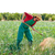 landbouwer · man · werken · ui · boomgaard · schoffel - stockfoto © lunamarina
