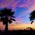 naplemente · fák · tengerpart · Spanyolország · égbolt · víz - stock fotó © lunamarina