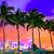 miami skyline sunset with palm trees florida stock photo © lunamarina