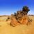 砂漠 · 風景 · 火山 · 公園 · テネリフェ島 · カナリア - ストックフォト © lunamarina