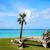 clave · oeste · Florida · playa · cielo · agua - foto stock © lunamarina